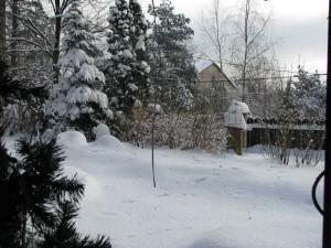 Zima w styczniu