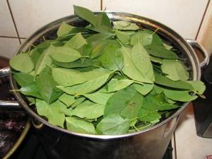 gotowanie owoców aronii, lisci wiśni, wody i cukru
